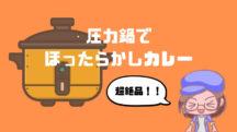 【スロークッカー】手間なし!!siroca(シロカ) 電気圧力鍋で作るカレーはほったらかしなのにめちゃめちゃおいしいのでレシピを紹介します。